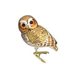 Pygmy Owl #18067  BEST SELLER 2016! #cliponbird #bestseller #oldworldchristmas #ornaments #glass #birds #owl #pygmyowl