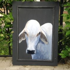 Acrylic on vintage cupboard door. Brahman cow on charcoal background. Love the etherial look of this breed.