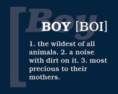 16 inch x 20 inch printable PDf of blue and white words displayed in a subway art style design.  Sign Text:  BOY: 1. the wildest of all animals. 2. a noise with dirt on it. 3. most precious to their mothers.  Looks incredible when mounted to wood or foam core, or can be framed in 16x20 poster frame.  My Etsy: http://www.etsy.com/shop/AlexanderCreative  My Website: http://alexandercreative.net
