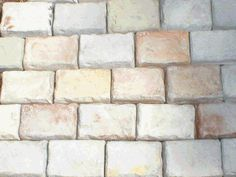 Make your own pavers with concrete molds