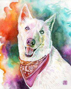 RETRATO de HUSKY SIBERIANO- Cuadro de perro hecho por encargo en acuarela