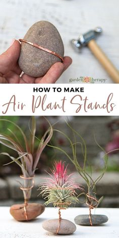 Garden Crafts, Garden Projects, Garden Art, Plant Crafts, Plant Projects, Air Plant Display, Plant Decor, House Plants Decor, Succulents Garden