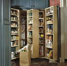 Ideas Kitchen Pantry Doors Ideas Built Ins - Kitchen Pantry Cabinets Pantry Shelving, Pantry Storage, Pantry Organization, Kitchen Storage, Pantry Ideas, Shelving Units, Organized Pantry, Kitchen Pantry Design, Kitchen Pantry Cabinets
