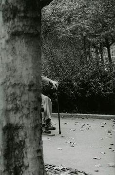 Samuel Beckett © François-Marie Banier