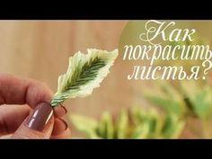 """(119) Крашу листья БЕЛИЗНОЙ. Зелень из гофрированной бумаги. Курс """"Свежесть"""" - YouTube"""