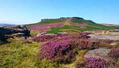 19 reasons why no one should ever visit the Peak District - Derbyshire Live