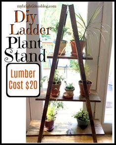 * Ladder Stand