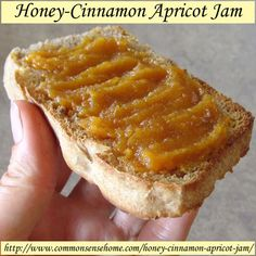 Homemade Honey-Cinnamon Apricot Jam Recipe