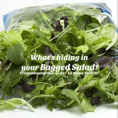 bagged salad during pregnancy, is it dafe to eat? Salad Bag, Splendid Spoon, Fit Mum, Grain Bowl, Pregnancy Nutrition, Food Safety, Good Advice, Smoothies, Vegetables