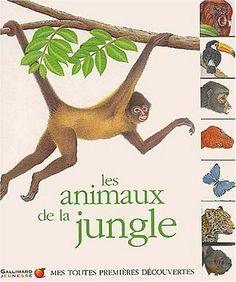 Les Animaux de la jungle de Collectif https://www.amazon.fr/dp/2070537285/ref=cm_sw_r_pi_dp_oyFgxbPFW8C6G