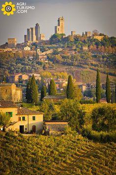 Just looking at this beautiful shot makes us ready to escape to Tuscany. Dopo un bellissimo tour delle campagne toscane, ecco cosa abbiamo raccolto, pronto ad essere condiviso con voi !!  http://www.agriturismo.com/agriturismi/toscana  #toscana   #tuscany   #italia   #italy   #campagne   #panorama   #paesaggio