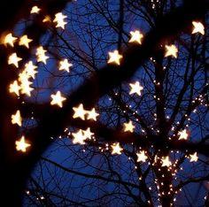 stars light up the sky