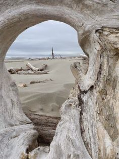 Beach Vibes, Driftwood Beach, Sea Photo, Beach Scenes, Beach Cottages, Wonders Of The World, Landscape Photography, Beach Photography, Seaside