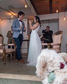 Ya pueden ver las fotos de #matri de Camilo y Manuela en la página. Olafa  (la perrita) se metió en muchas fotos :P My Pawi I wish you the best  http://ift.tt/2zle5Tp . . . .  #ParisyCami #Matrimonio #photo #NikonD3000 #Rusticus #doglover #foto #wedding #bride #weddingdog #love