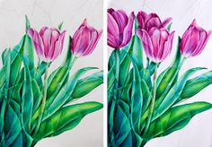 beautiful work from the Derwent Color pencil blog!