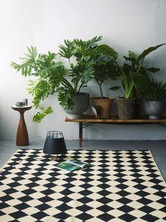 www.inspirationalaesthetics.squarespace.com