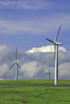 Wind energy converted into mechanical energy #Energy, #Transformations