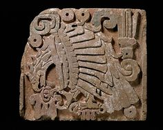 While stone relief panels with this image decorate architectural structures at Tula, capital of the Toltec people in central Mexico, and at the Maya site of Chichén Itzá in Yucatan, this example of carved limestone was apparently found in the northern part of the Mexican state of Veracruz. It depicts a raptor in profile. The head is bent and the impressive bird pecks at a tri-lobed object held in a massive talon. The motif is believed to represent an eagle devouring a human heart. In ancient…