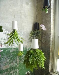 Really neat upside down hanging flower pots. Would be nice for hanging herbs in the kitchen! by Brooks York