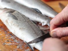 Cleaning a sea bass Jamaican Recipes, Sea Bass, Catfish, Food And Drink, Cleaning, Meat, Cooking, Busa, Gluten Free Cookies