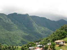 Phawngpui National Park - in Mizoram, India. The Blue Mountain, a name given by the British colonials.
