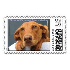=>quality product          	Save a life 008 stamps           	Save a life 008 stamps We have the best promotion for you and if you are interested in the related item or need more information reviews from the x customer who are own of them before please follow the link to see fully reviewsThis De...Cleck Hot Deals >>> http://www.zazzle.com/save_a_life_008_stamps-172727931565888139?rf=238627982471231924&zbar=1&tc=terrest