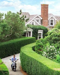 Hedges and shingles