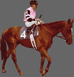 Affirmed, the last Triple Crown Winner in 1978.