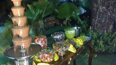 Showcofonte & Showcofestas  Buffet de Fontes de Chocolate e Carrocinhas para sua Festa...: Casamento de Adriana e Pedro em Goiânia...