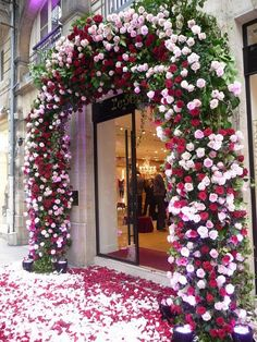 Repetto shop in Paris.Not a flower shop but beautiful!