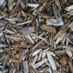 Use mulch to create a designated potty area for dogs.