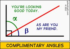 Complimentary Angles - Spiked Math Comic - A daily math webcomic meant to entertain and humor the geek in you. Math Puns, Math Memes, Math Humor, Maths, Science Jokes, Life Science, Funny Math Jokes, Nerd Jokes, Math Math
