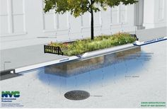 N-Y développe une infrastructure verte peu coûteuse et durable afin d' éviter le débordement des égouts en retenant et filtrant les eaux de ruissellement avant qu'elle n'atteigne les égouts. L'infrastructure verte comprend entre autres des tampons de végétation. http://inhabitat.com/nyc/nyc-dep-unveils-plan-to-add-stormwater-filtering-green-infrastructure-to-bed-stuy-streets/