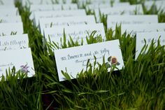 Escort cards in wheat grass. Farm Wedding, Summer Wedding, Wedding Day, Wedding Coordinator, Wedding Venues, Al Image, Faux Grass, Down South, Wedding Pictures