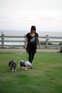 The best companions for a Santa Monica run? Your dogs of course!