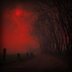 Highway to Hell ┼ Art Devil Aesthetic, Goth Aesthetic, Dark Spirit, Spirit Magic, Mtg Altered Art, Highway To Hell, Red Moon, Dark Forest, Shades Of Red