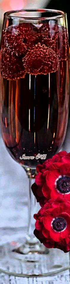 Shades Of Burgundy, Bella, Bordeaux, Red Wine, Alcoholic Drinks, Romantic, Good Things, Couture, Celebrities
