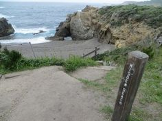 13 best point lobos state natural reserve images in 2017 rh pinterest com