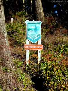 Obstruction Pass State Park: Our Bright and Sunny Gem on Orcas Island