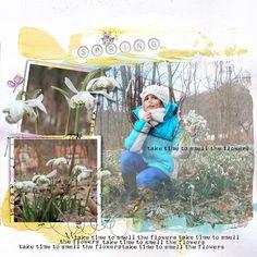 Spring {Collection} by Dawn Inskip  Promenade dans la Fôret magique : la fôret des perce-neiges