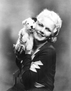 Jean Harlow with precious Jack Russell Pup. Golden Age Of Hollywood, Old Hollywood Glamour, Classic Hollywood, Vintage Hollywood, Hollywood Stars, Jean Harlow, Sealyham Terrier, Fox Terrier, Terriers