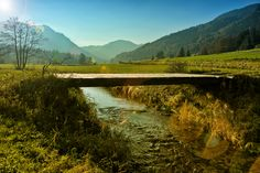 Mountain Creek (Stock Photo By Krappweis) [ID: 1404705] - freeimages