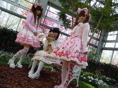 Greenhouse Lolita