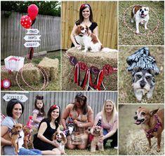 Yappy Birthday Pawty - Dog Birthday Party - Cavalier King Charles Spaniel