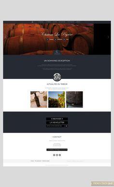 Château La Peyrère - Présentation du  site internet - Page d'accueil Site Internet, Touch, French, French People, French Language, Early French, France