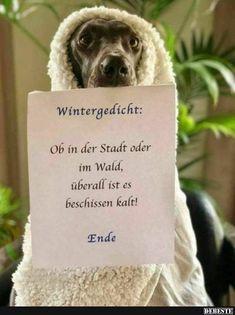 Wintergedicht.. | Lustige Bilder, Sprüche, Witze, echt lustig