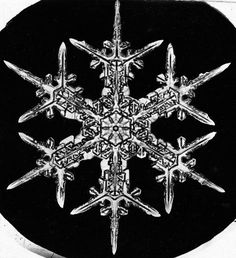 Published in 1923, these vintage images highlight the beauty and mystery of snow crystals.