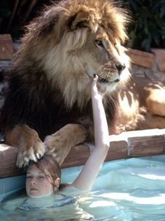 Tippi Hedren's daughter, Melanie Griffith, with Neil the lion, 1971.