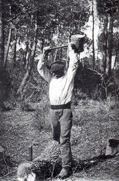 vieux métiers forestiers : Le fendeur-lattier