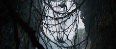 King Kong / Andrew Lesnie